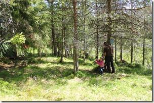 Barn og voksne i Trollskogen