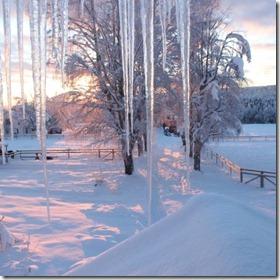 Utsikten fra kontoret desember